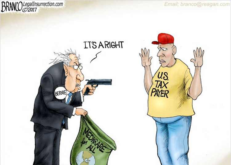 Bernie_Its_A_Right-cartoon750