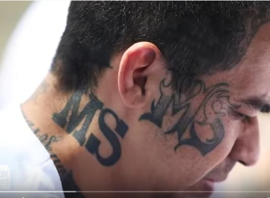 Witness Against MS-13 Murdered After his Identity was Released To Defense Attorneys